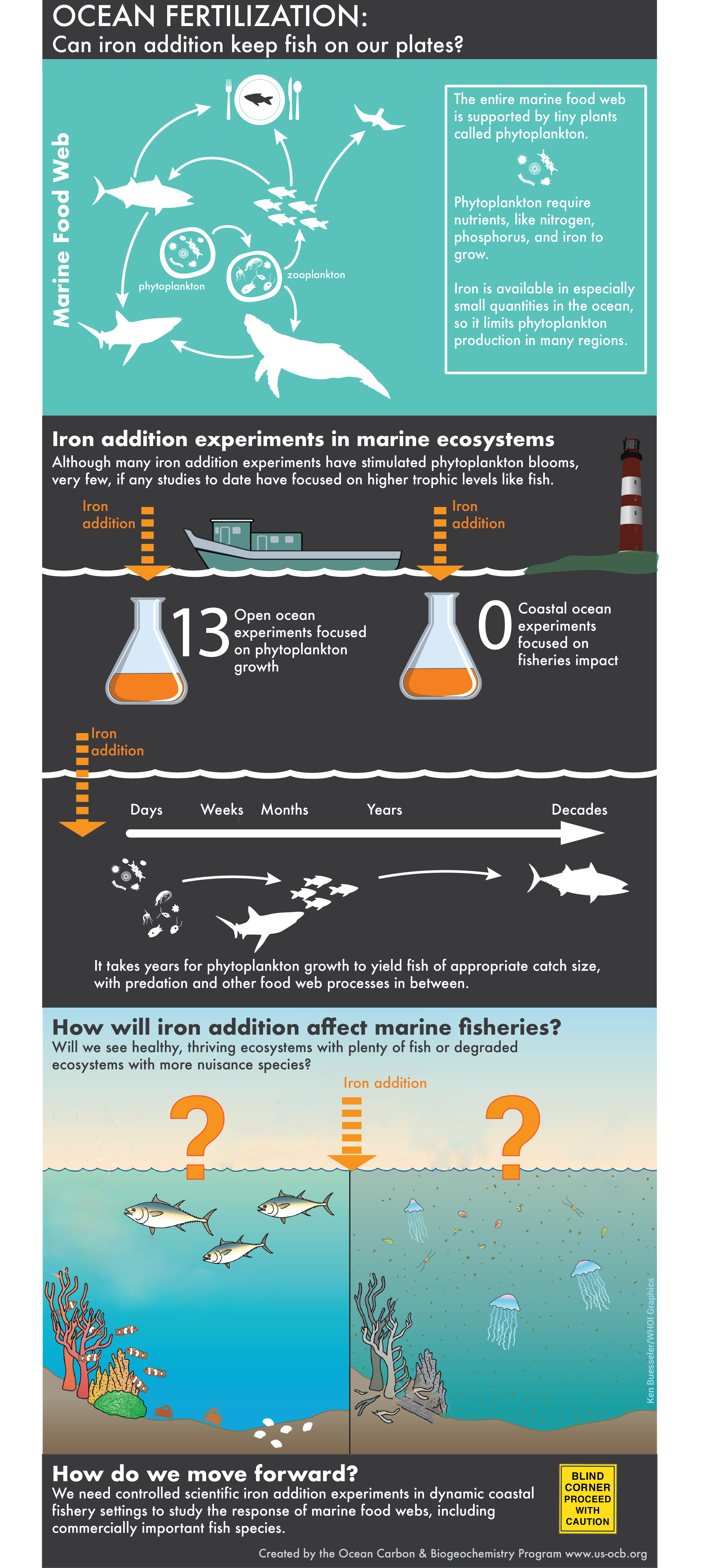 Ocean Fertilization and Fisheries Infographic by OCB