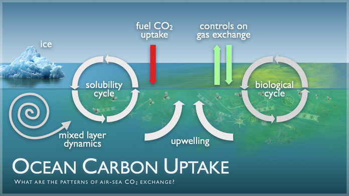 Ocean Carbon Uptake by NOAA PMEL