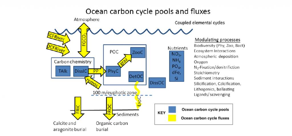 Figure modified from C. D. Jones et al. (2016) The Coupled Climate–Carbon Cycle Model Intercomparison Project Geosci. Model Dev., 9, 2853–2880.