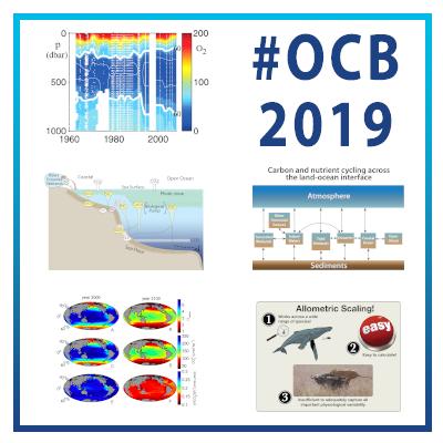 OCB2019 Plenaries-social-s