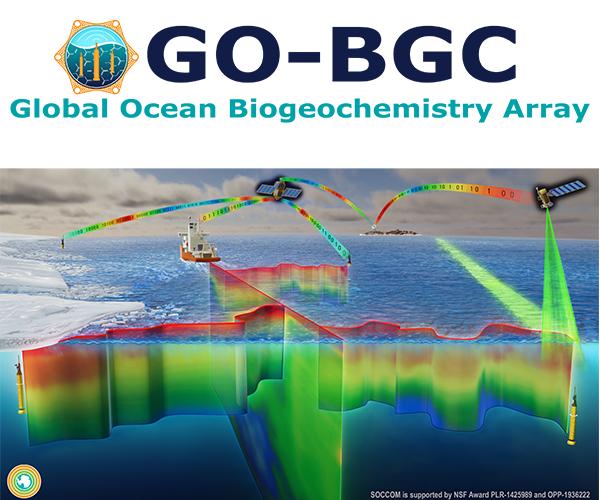 GO-BGC header