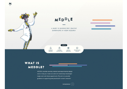 BPG-Meddle-slider