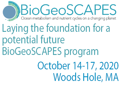 BioGeoSCAPES scoping workshop-slider