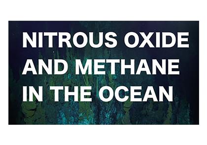 Methane-NO vid